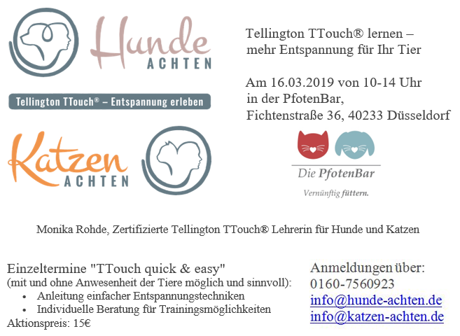 ttouch 2019